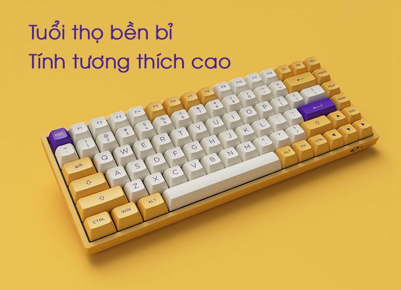 keyboard-AKKO-3084-v2-ASA-Los-Angeles-tuong-thich